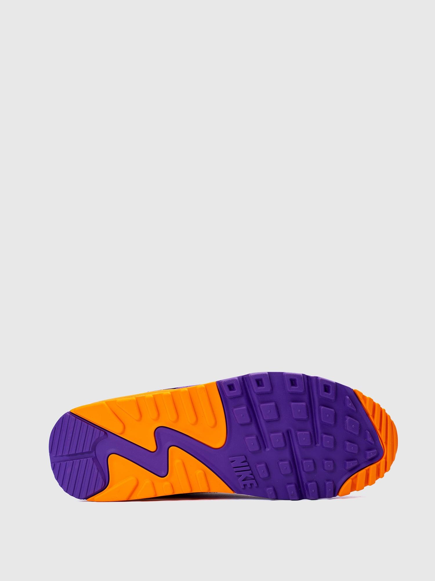 Nike Air Max 90 Viotech OG